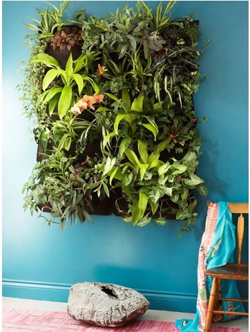 Creating Green Spaces In Your Flat Happho